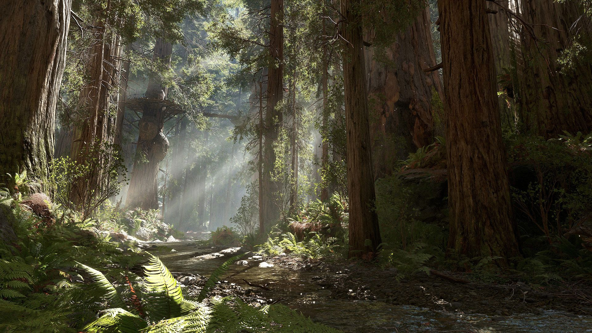 Forest moon of Endor.